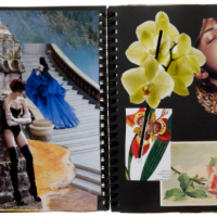 Lauren Santo Domingo's Scrapbook (and many others) in T Magazine