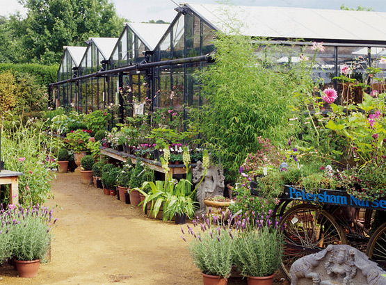 Petersham Nurseries Keep It Chic