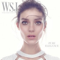 WSJ Style Section
