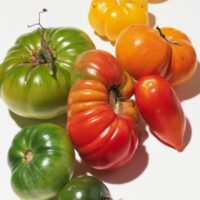 In The WSJ: End-Of-Summer Tomato Recipes